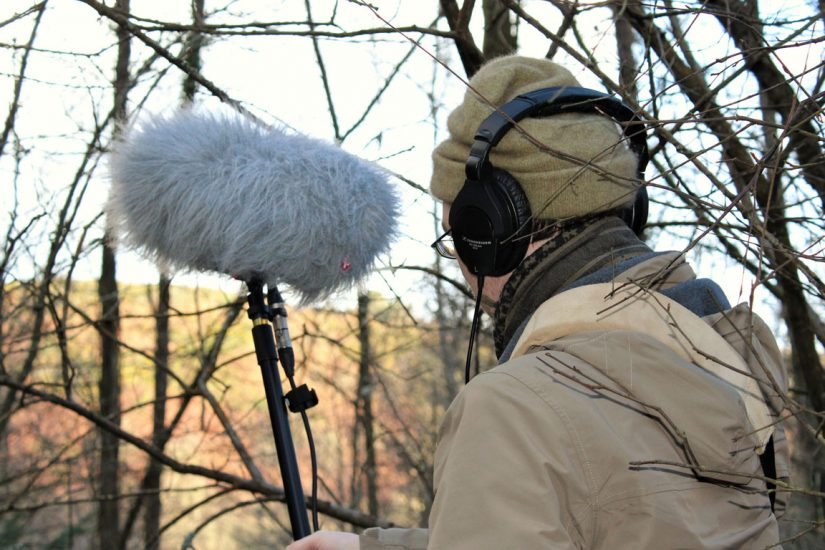Recording the birds at Fingle Woods