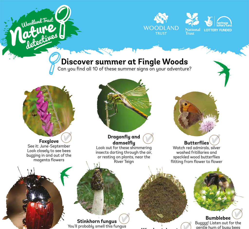 Fingle Woods summer spotter sheet